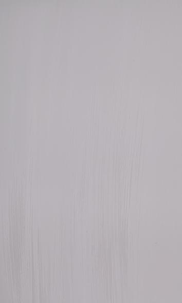Autentico Venice, colour French Grey 2.5 L